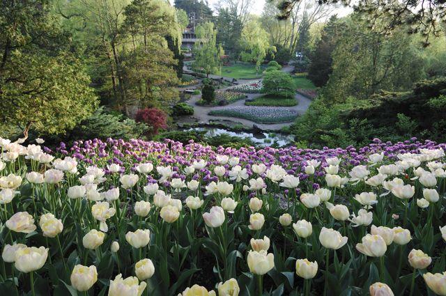 Royal botanical gardens ontario for The gardener burlington